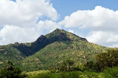Arunachala mountain in Tiruvannamalai, India is where Ramana Maharshi lived