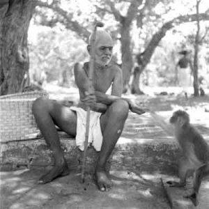 Ramana Maharshi with a monkey at Ramana Ashram